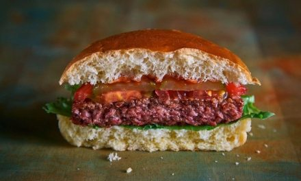"Moving Mountains to serve ""bleeding"" vegan burgers in schools and hospitals"