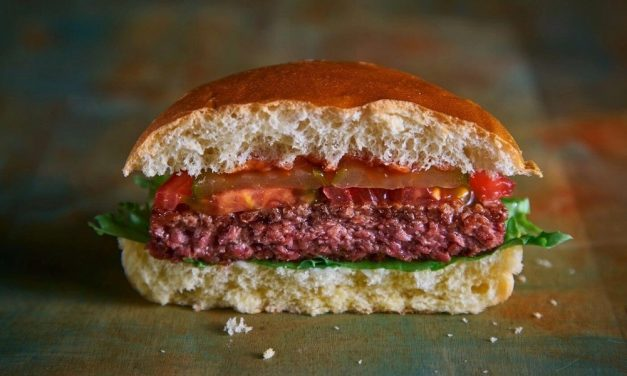 """Moving Mountains to serve """"bleeding"""" vegan burgers in schools and hospitals"""